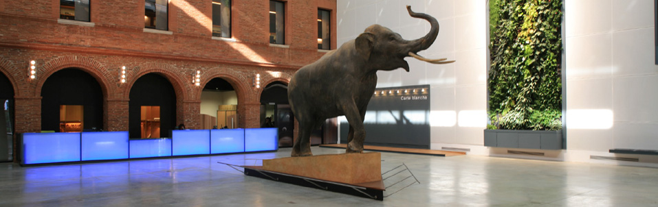 L'AGSO (Association des Géologues du Sud-Ouest), partenaire de la SGF, a fêté ses 50 ans la semaine dernière en organisant un colloque intitulé « Les Géoressources du Grand Sud-Ouest face aux défis du XXIe siècle », au Museum d'Histoire Naturelle de Toulouse.