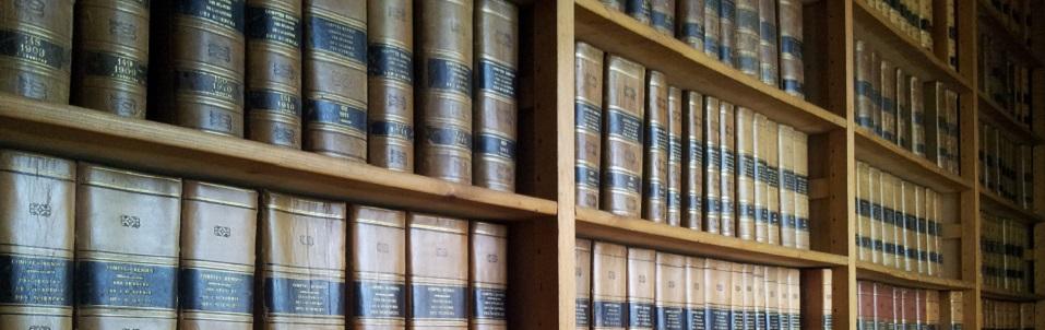 Pour cause de travaux, certains ouvrages de bibliothèque seront ponctuellement indisponibles. Merci de votre compréhension