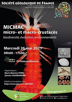 affiche sgf micmac 250