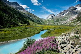 water stream surrounded by mountains flowers sunny day Freepik